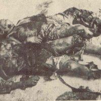 En el 80º aniversario del bombardeo de Cabra, por Julio R. Fernández García.